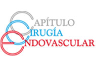 capitulo endovascular