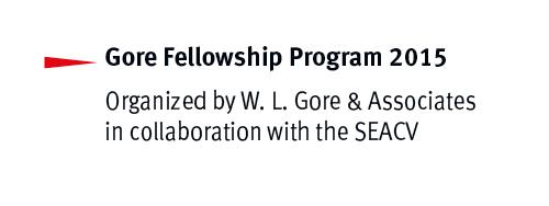 gore fellowship